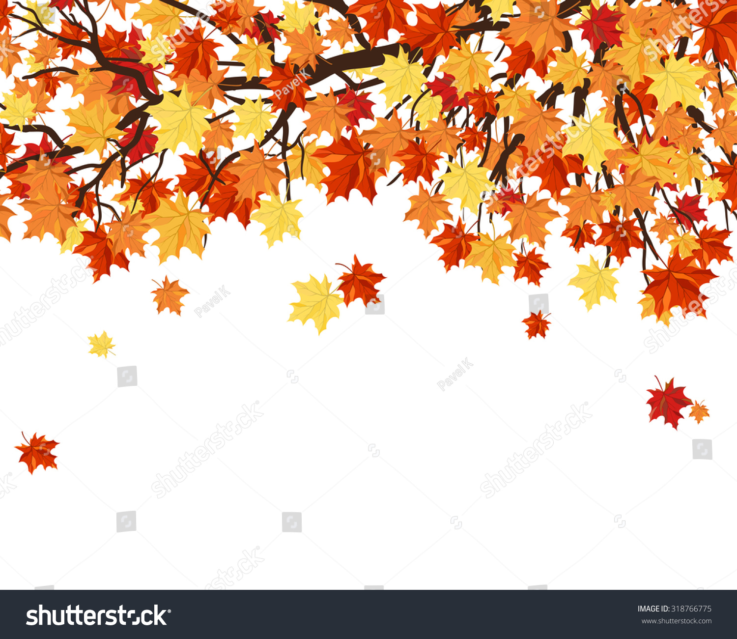 Autumn Frame Maple Tree Branches Leaves Stock Vector (Royalty Free ...