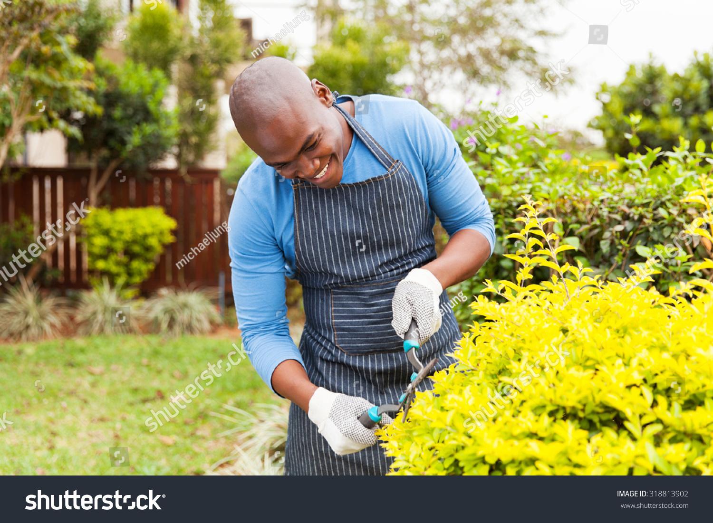 Jardin À L Américaine photo de stock de heureux afro-américain taillant des