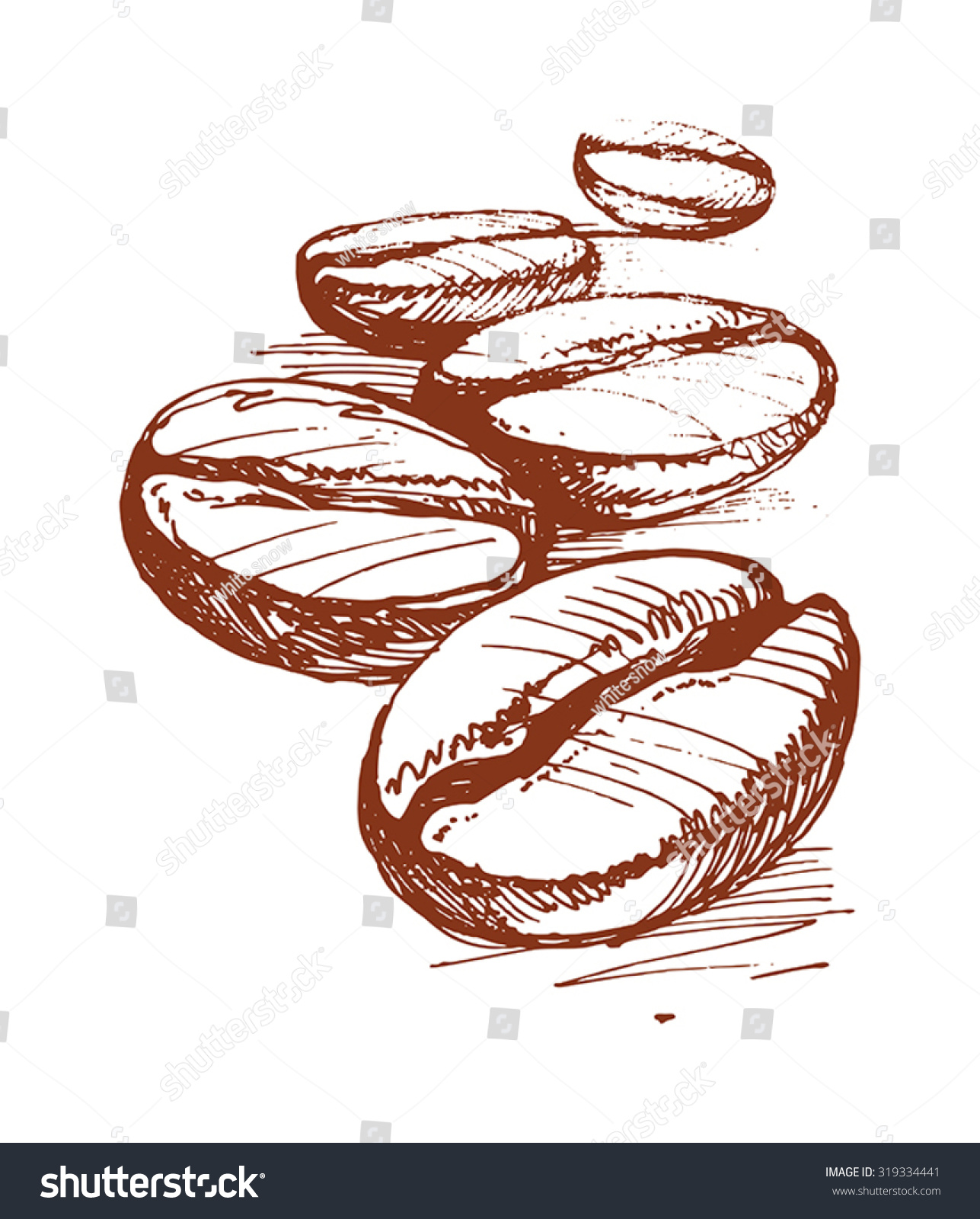 painted coffee beans sketch vector drawing stock vector