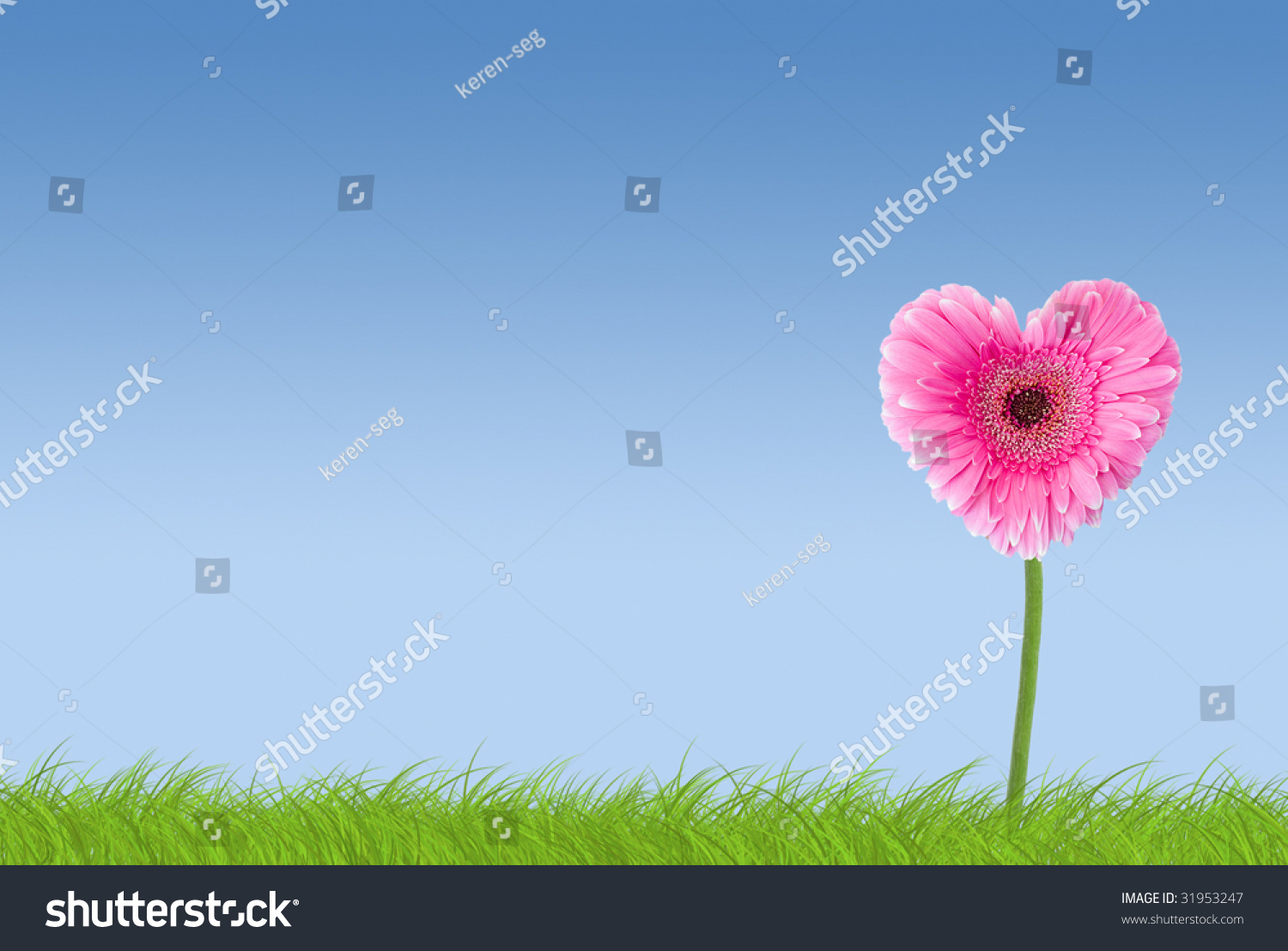 Pink Heart Shaped Flower On Grass Stock Photo Edit Now 31953247
