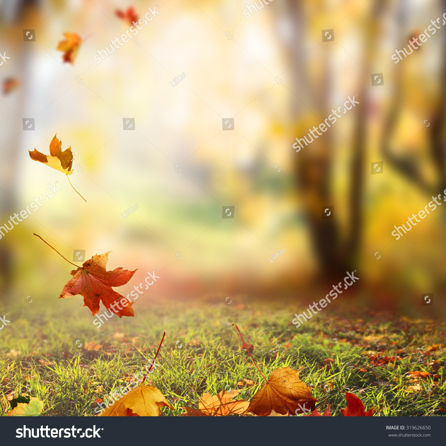 Falling Autumn Leaves Background Stock Photo 319626650 - Shutterstock