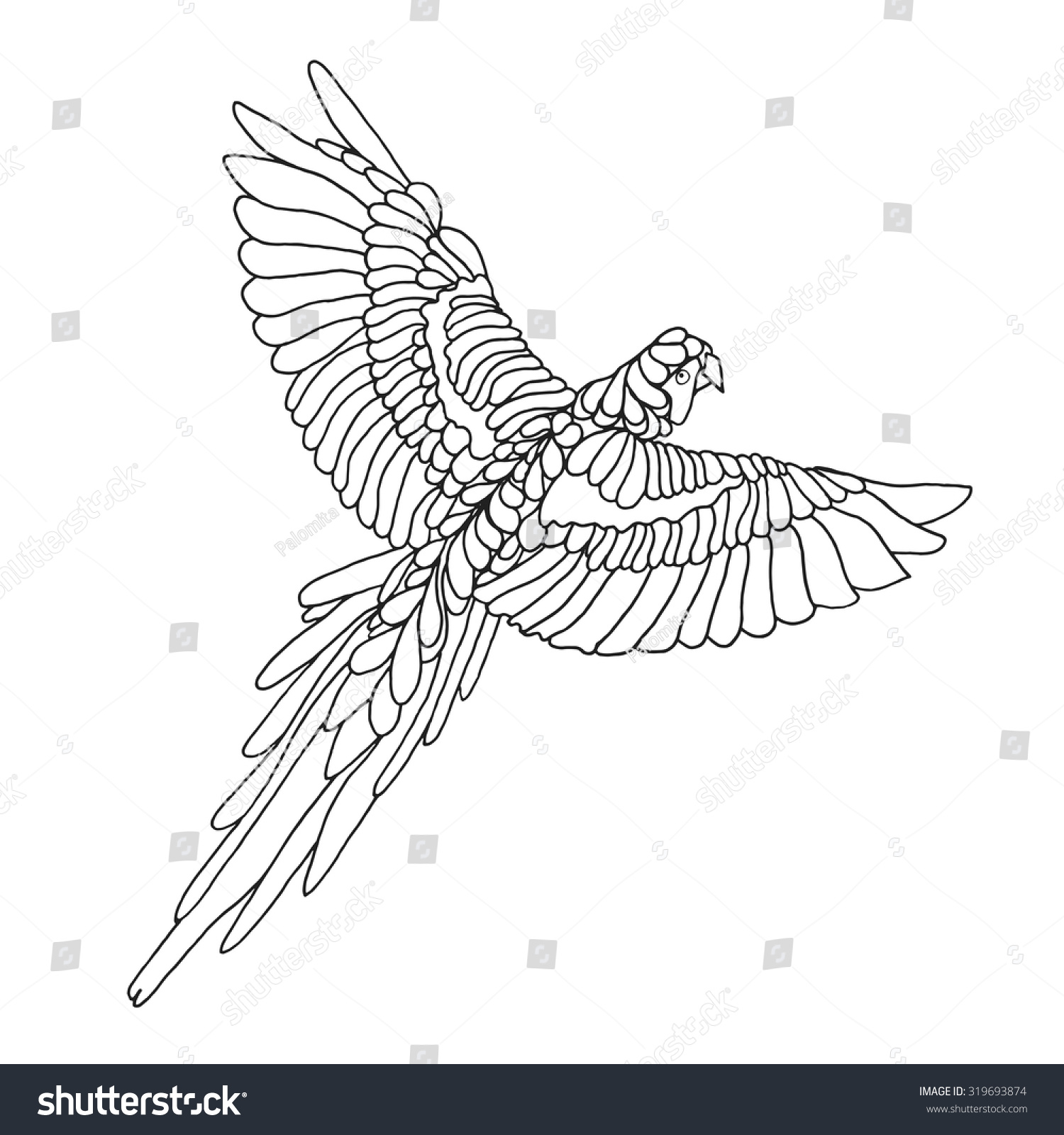 Macaw Parrot Coloring Page Birds Black Stock Vector (Royalty Free ...