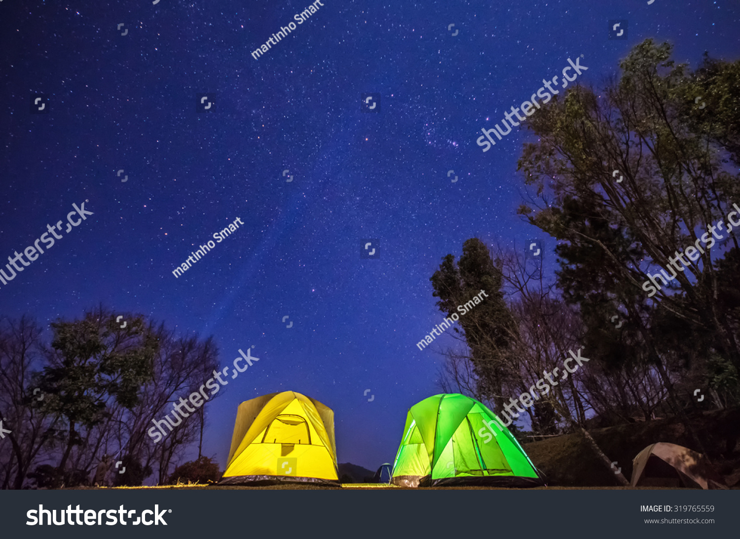 Camping In Forest At Night With Star