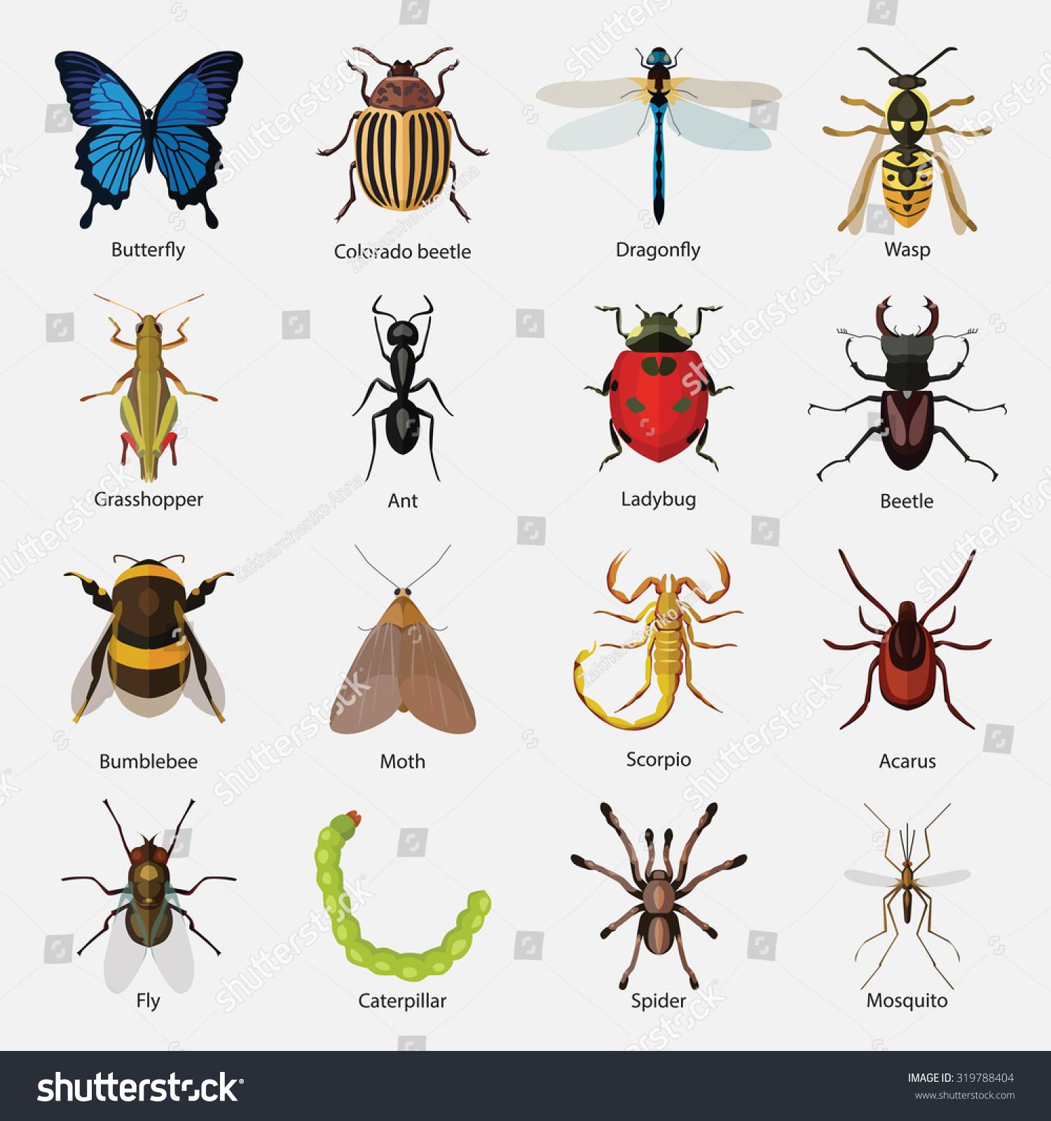 how to create a ascending list grasshopper