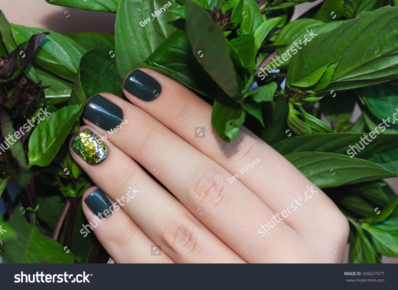 Basil Female Hand Beautiful Dark Green Stock Photo 320627477 ...
