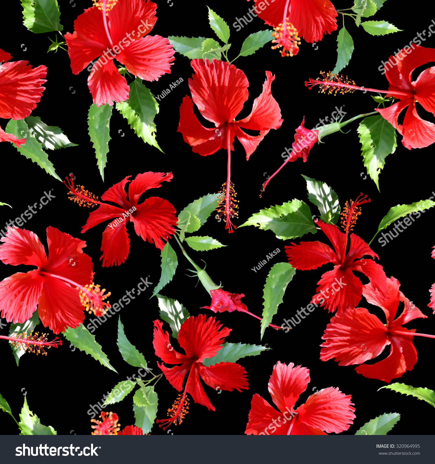 Tropical Flowers Pattern On Black Background Stock Illustration