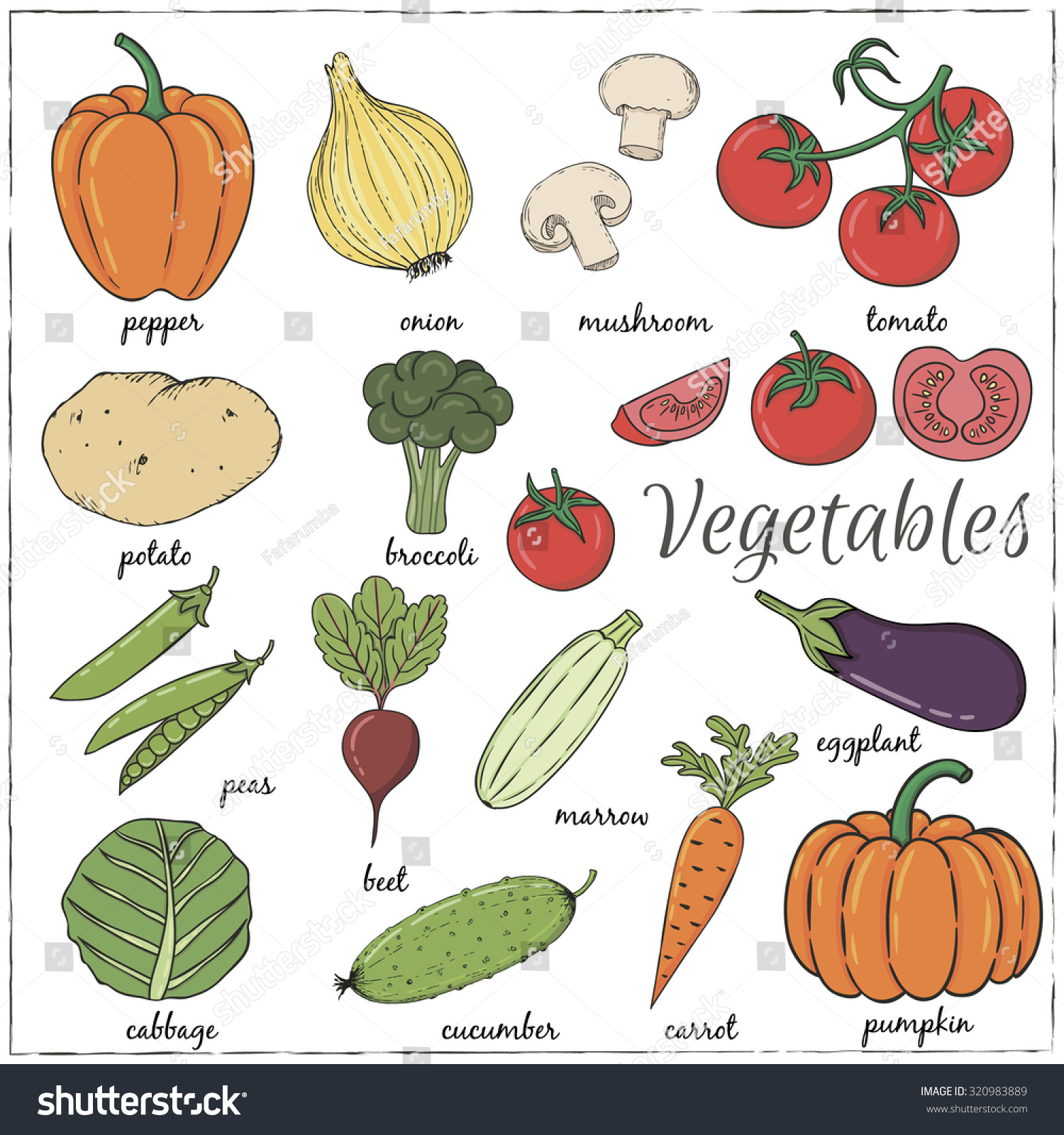Vegetable Drawing Images With Names Vegetarian Foody S