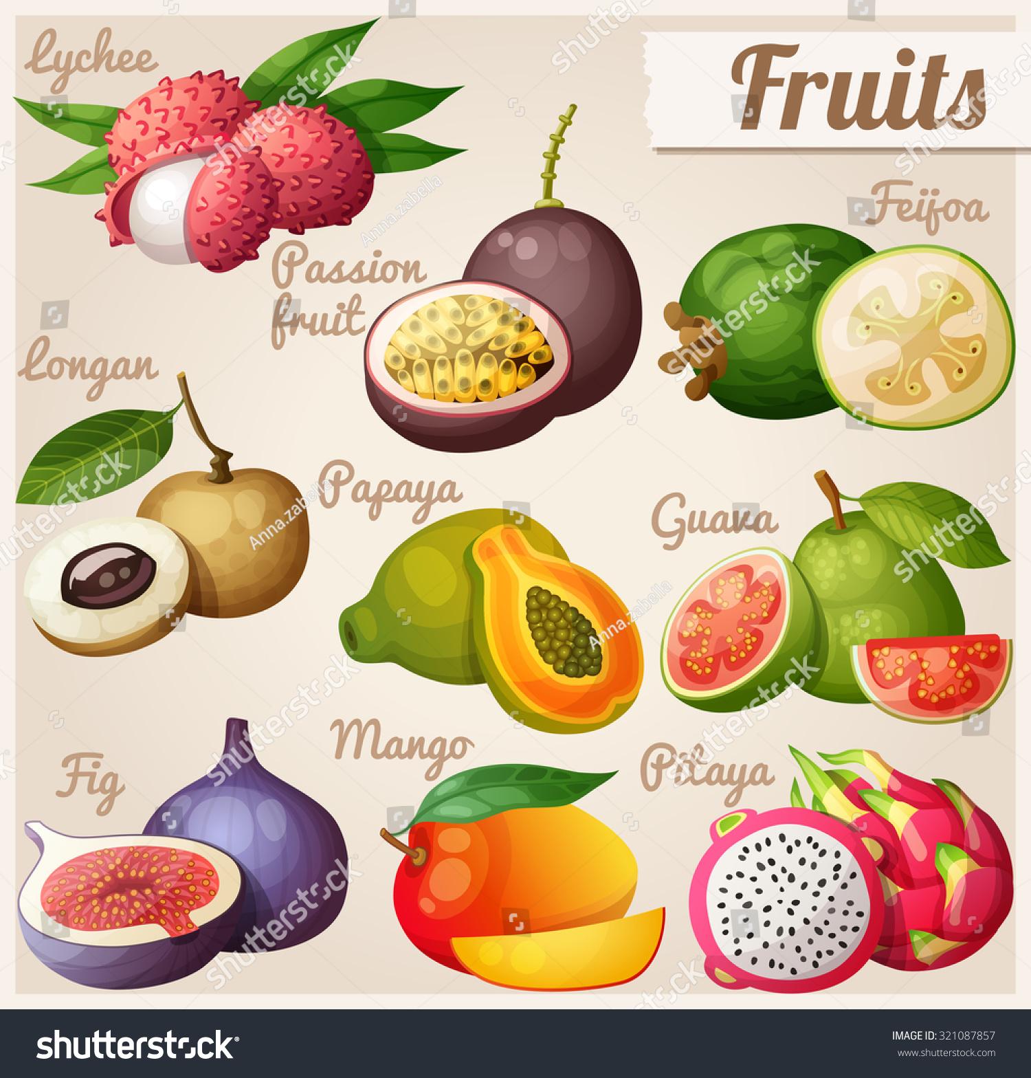 papaya fruit by their fruits