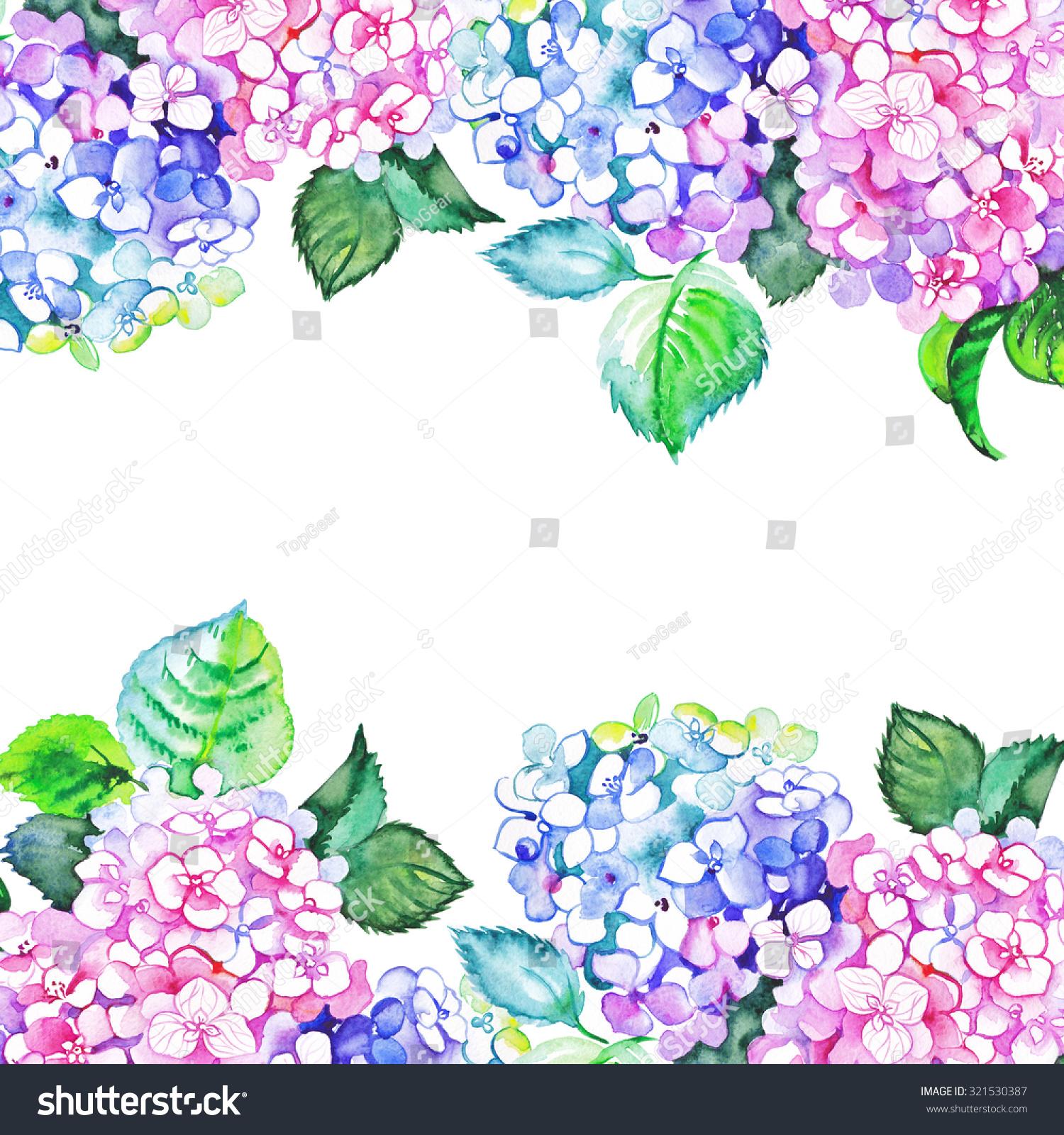 Watercolor Hydrangea Borders Stock Illustration 321530387 ...