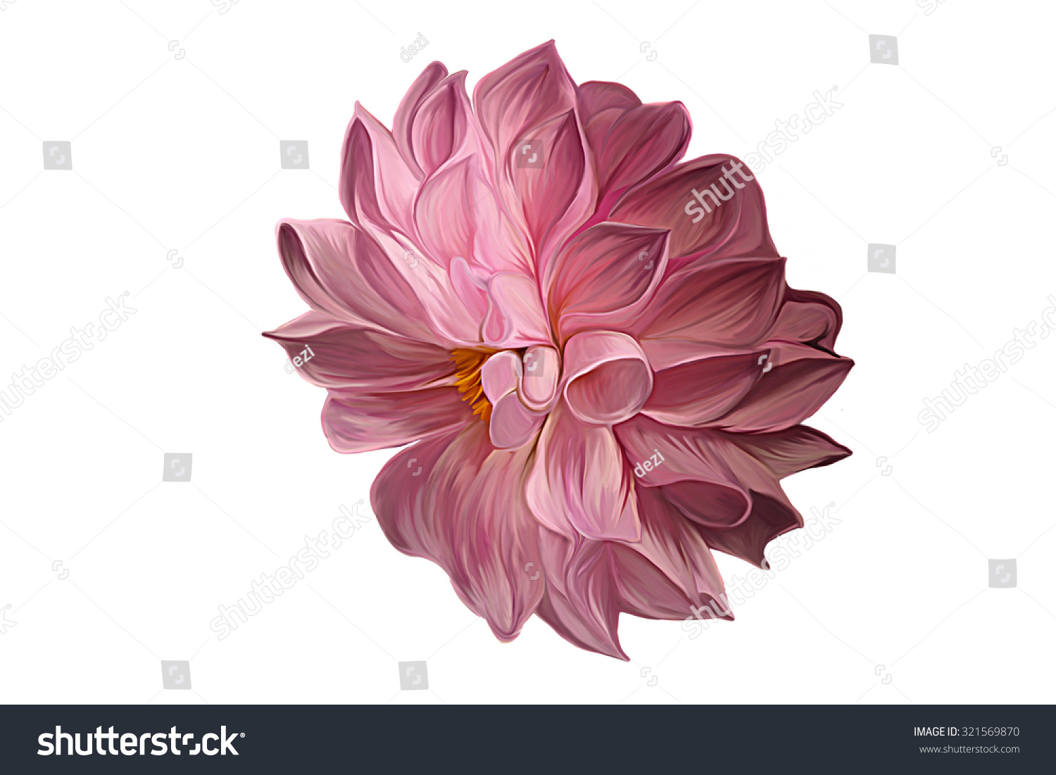 Drawing Oil Painting Dahlia Flower On Stock Illustration 321569870