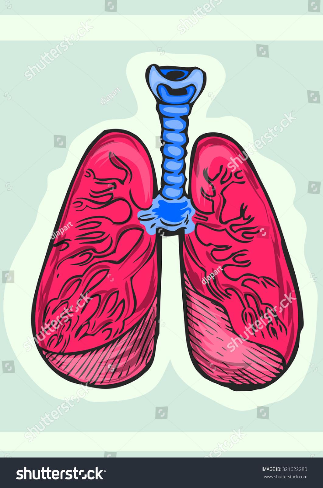 human lungs cartoon hand draw illustration stock vector 321622280, Cephalic Vein