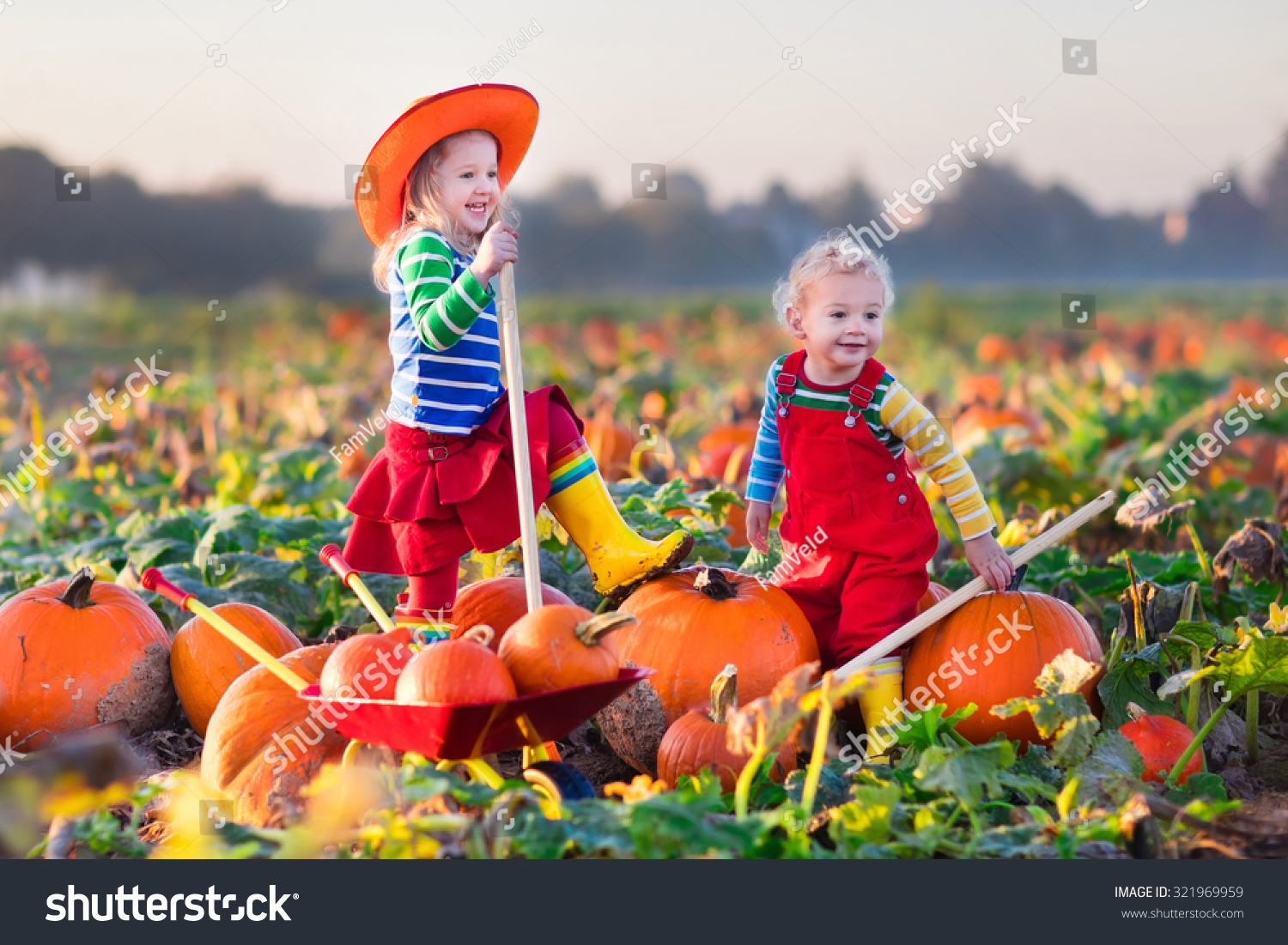 Kids Pumpkin Picking Site Shutterstock Com