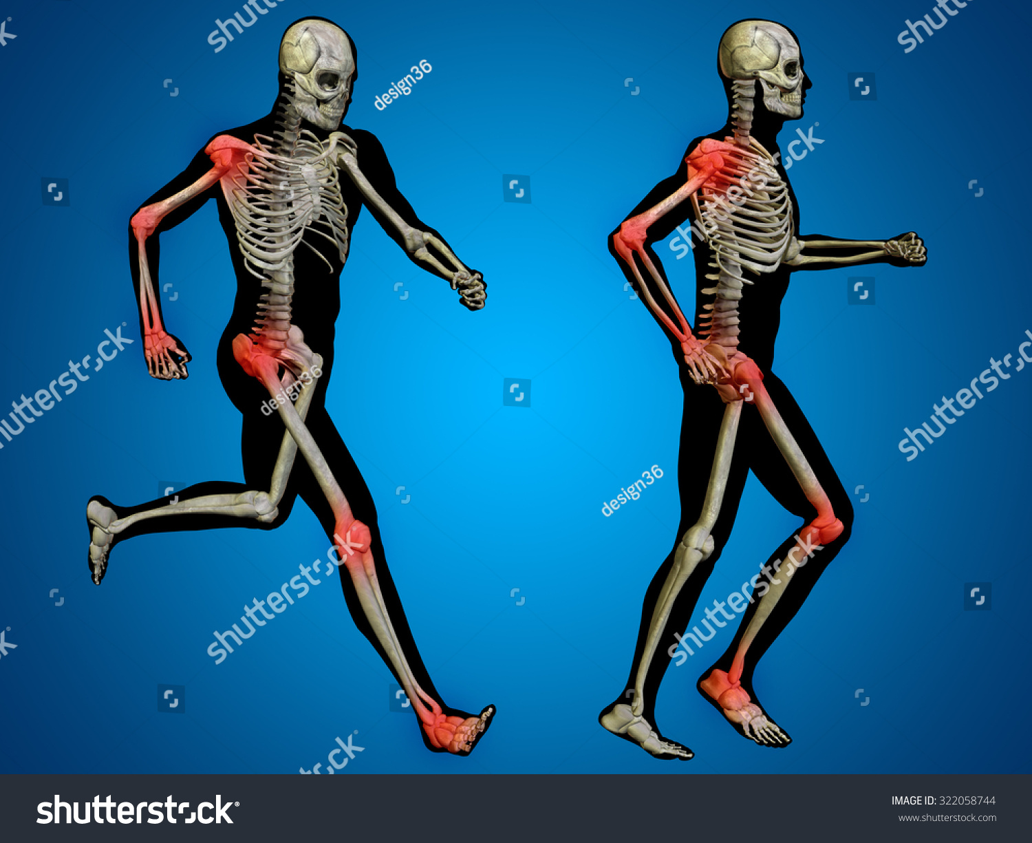 Concept Or Conceptual 3d Human Man Or Male Skeleton Pain Or Ache