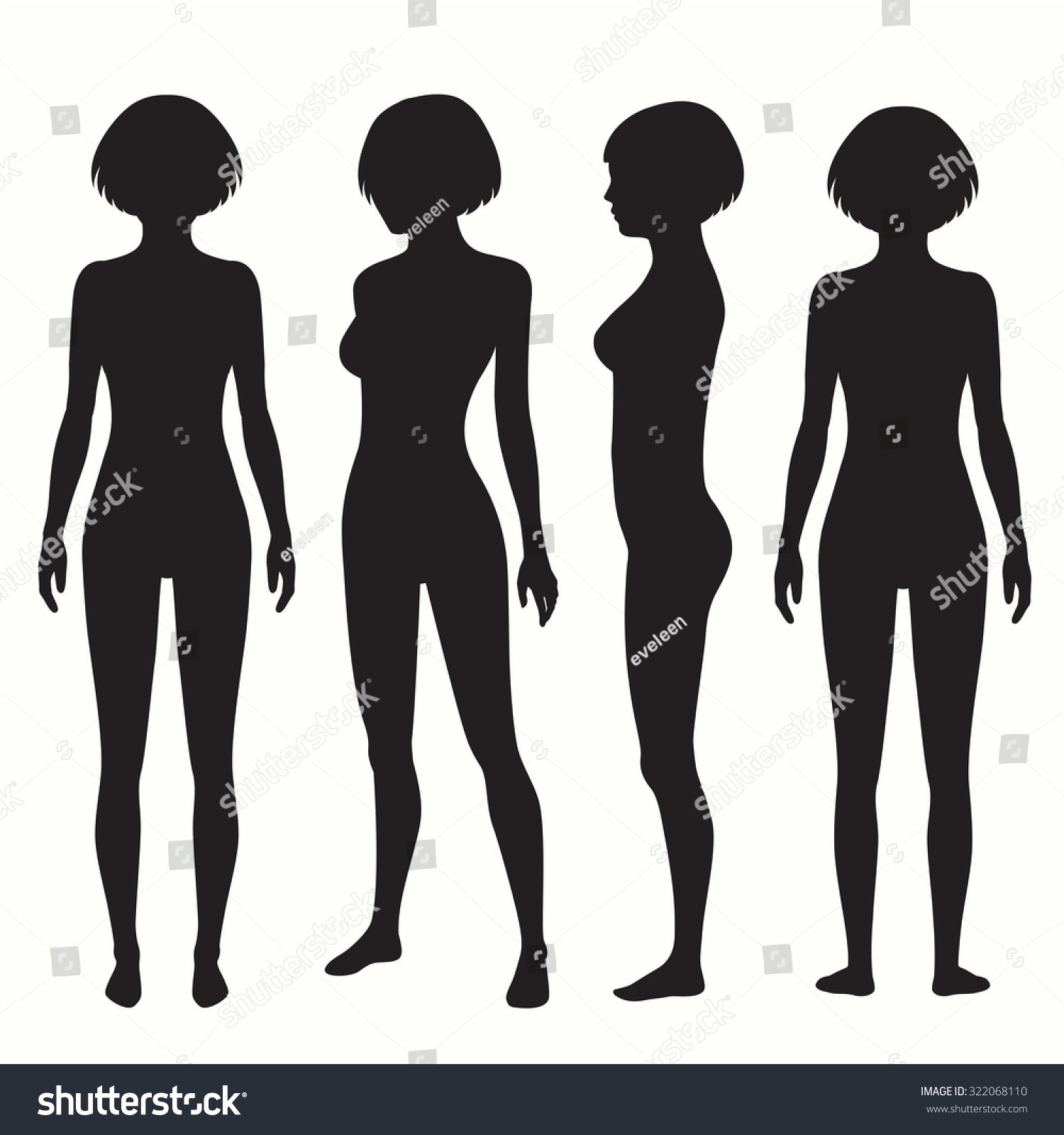 Human Body Anatomy Front Back Side Stock Vector 322068110 - Shutterstock