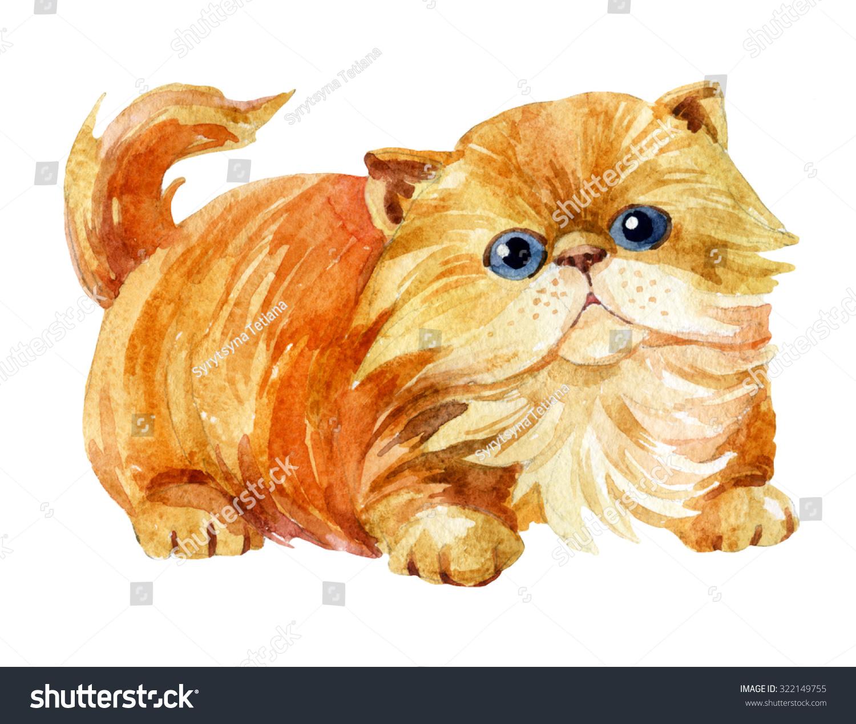 Kitten Sitting Persian Cat Cream Tabby Stock Illustration