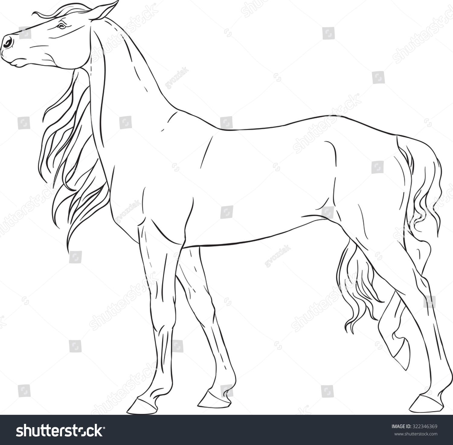 Coloring book with a horse | EZ Canvas