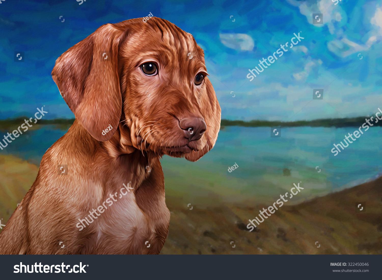 Drawing Hungarian Vizsla Pointer Puppy Portrait Stock Illustration ...