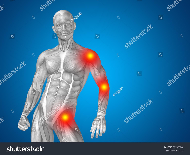 Conceptual 3 D Human Man Anatomy Upper Stock Illustration 322479140 ...