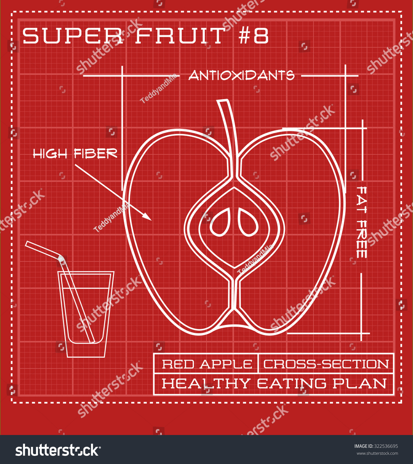 Blueprint diagram line drawing fruit infographic vectores en stock blueprint diagram line drawing of fruit infographic of an apple cross section malvernweather Image collections