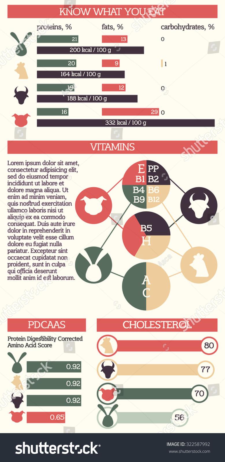comparison infographic template - Selo.l-ink.co