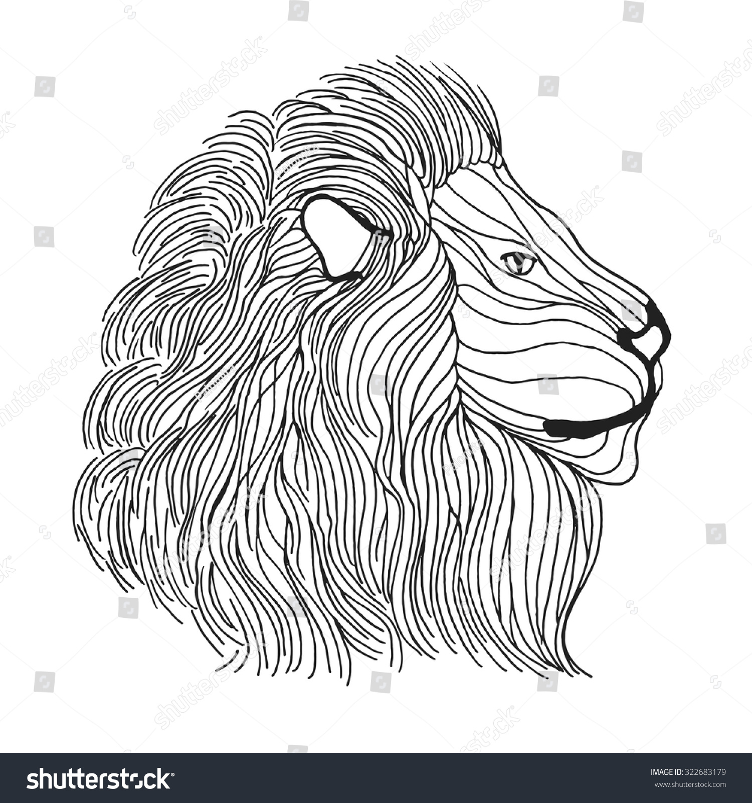 Coloring Pages Lion Head Coloring Page Mycoloring Free Printable