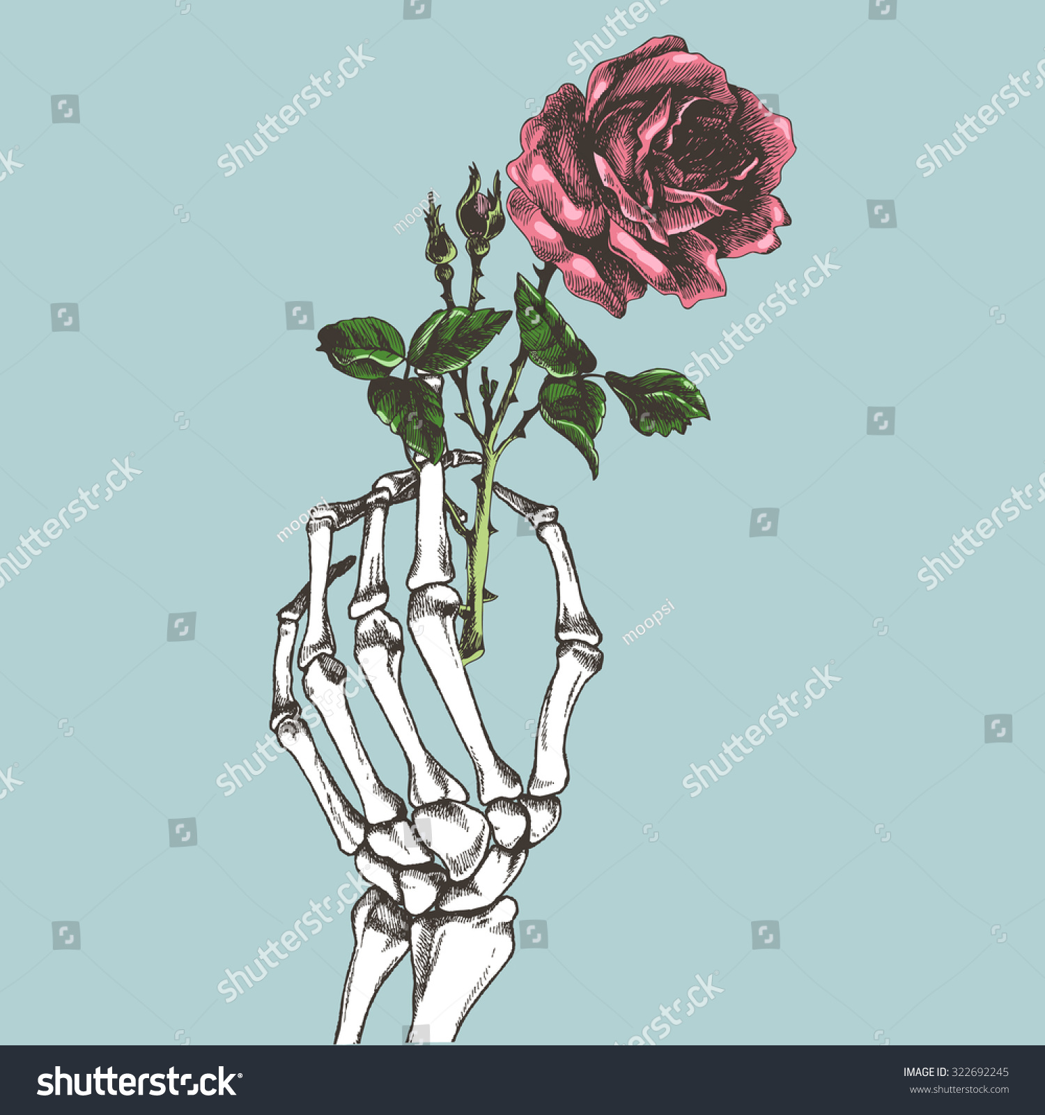 Hand skeleton with flower vector illustration for Hand holding a rose drawing