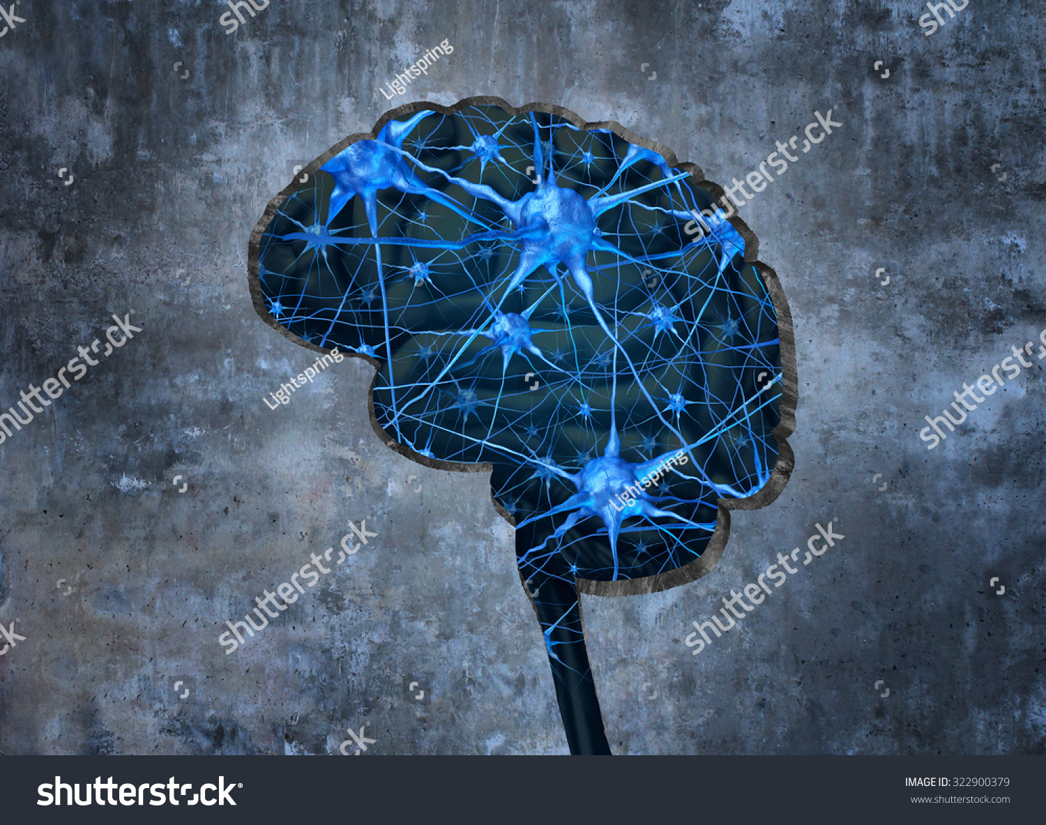 an analysis of the human brain in neurology Supported by recent human neuroimaging studies, the insula is re-emerging as an important brain area not only in the physiological understanding of the brain, but.