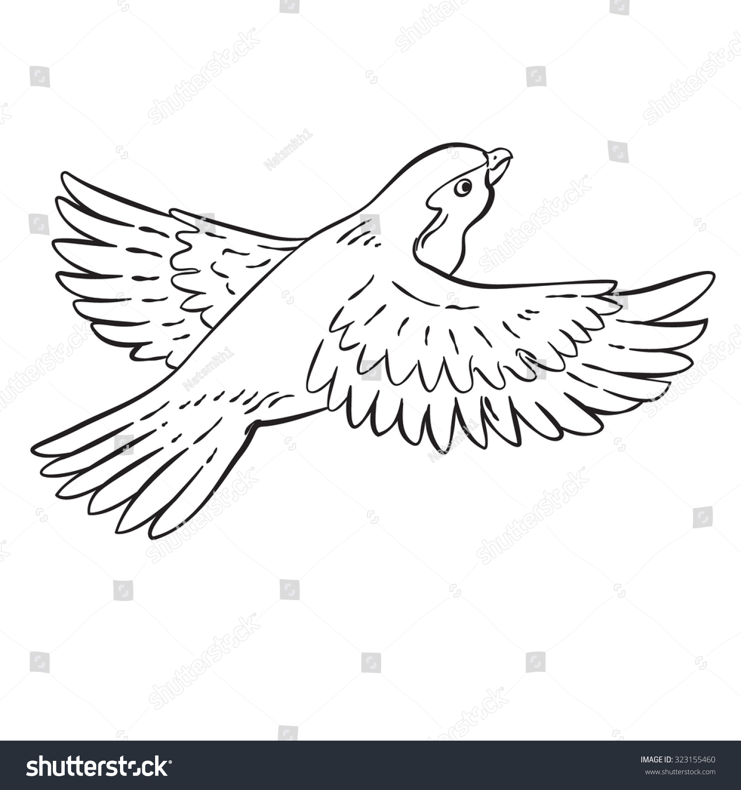 Line Drawing Editor : Vector drawing cartoon bird line stock