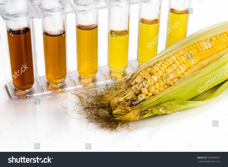 Corn Generated Ethanol Biofuel Test Tubes Stock Photo (Edit