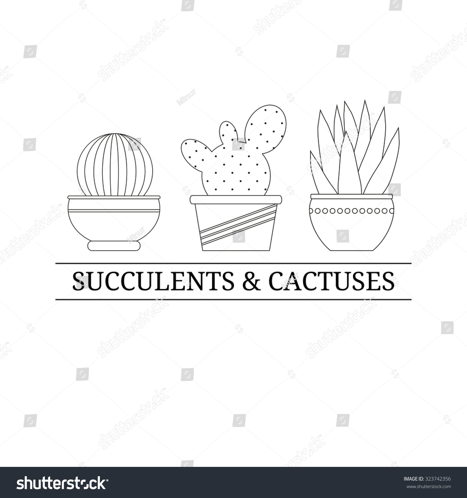 logo design template outline cactuses pot stock vector royalty free