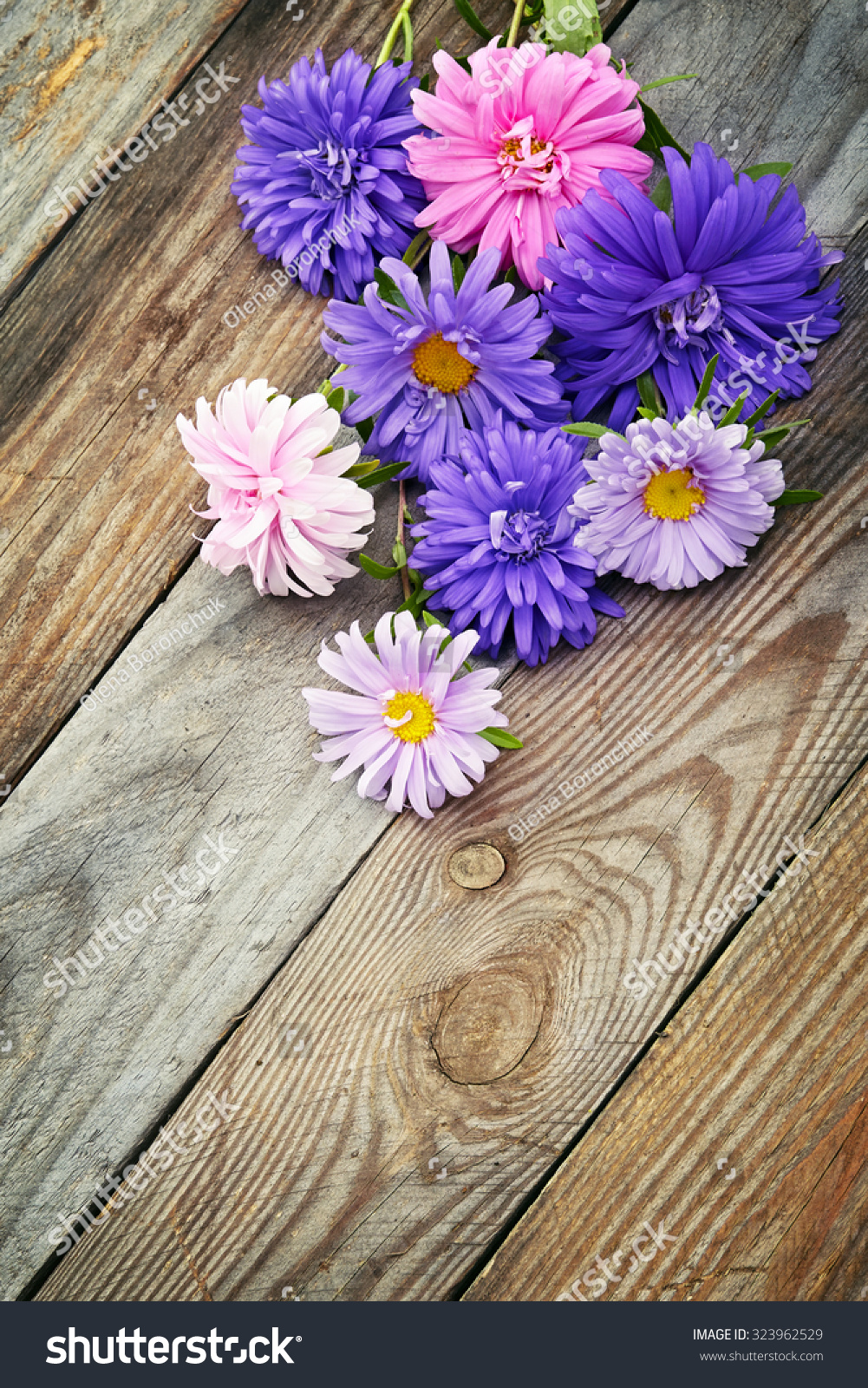 Aster Flowers Bouquet On Wooden Background Stock Photo Edit Now