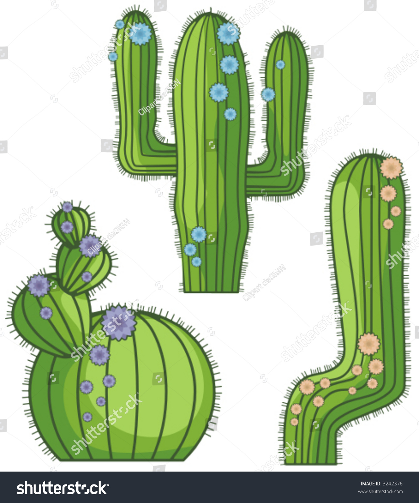 cactus singles over 50 Cactus in the desert personal checks complete your new check order with matching cactus in the desert address labels and a coordinating over 50 choices.