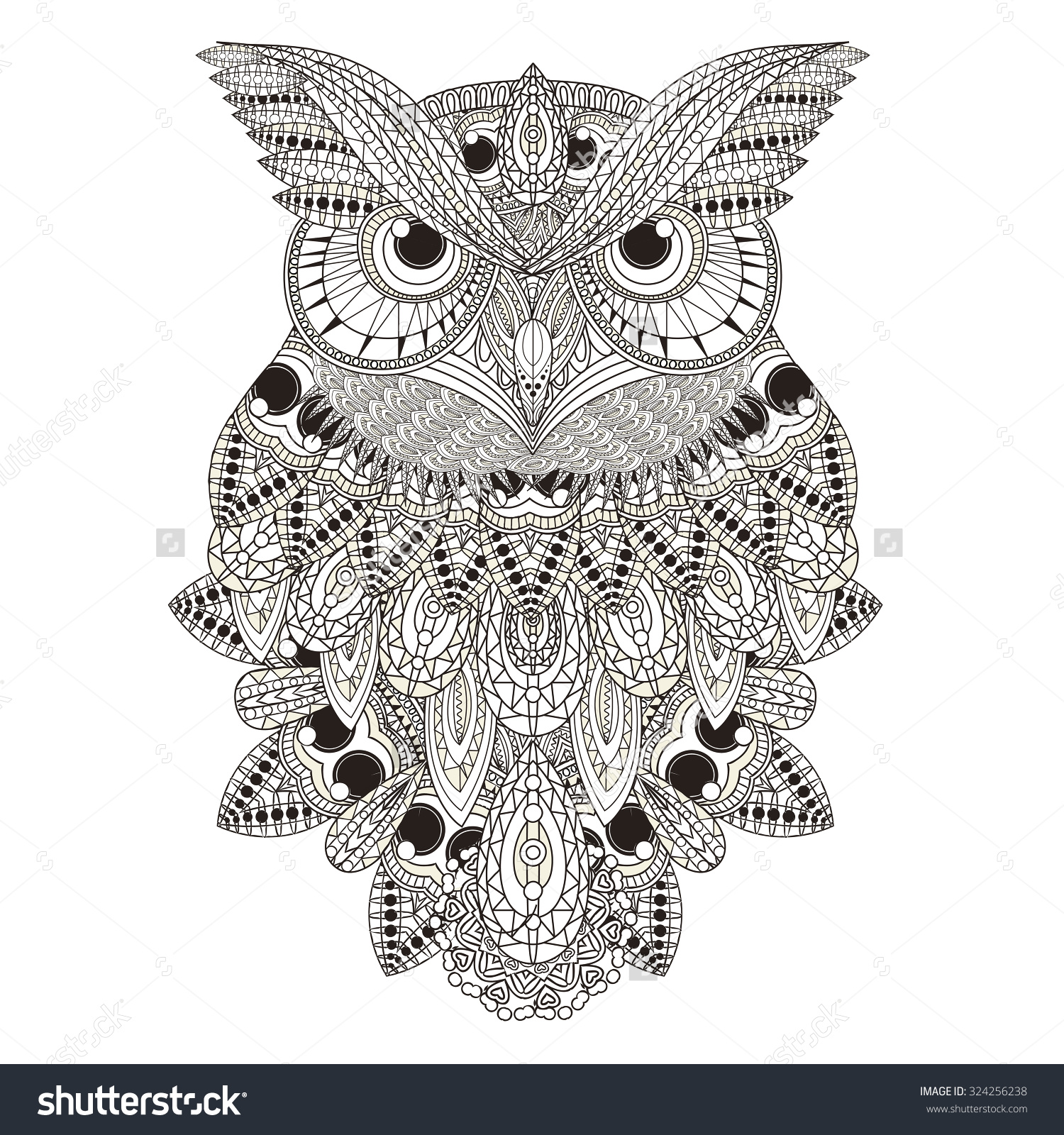 Detailed Owl Coloring Pages Sumptuous Page In Exquisite