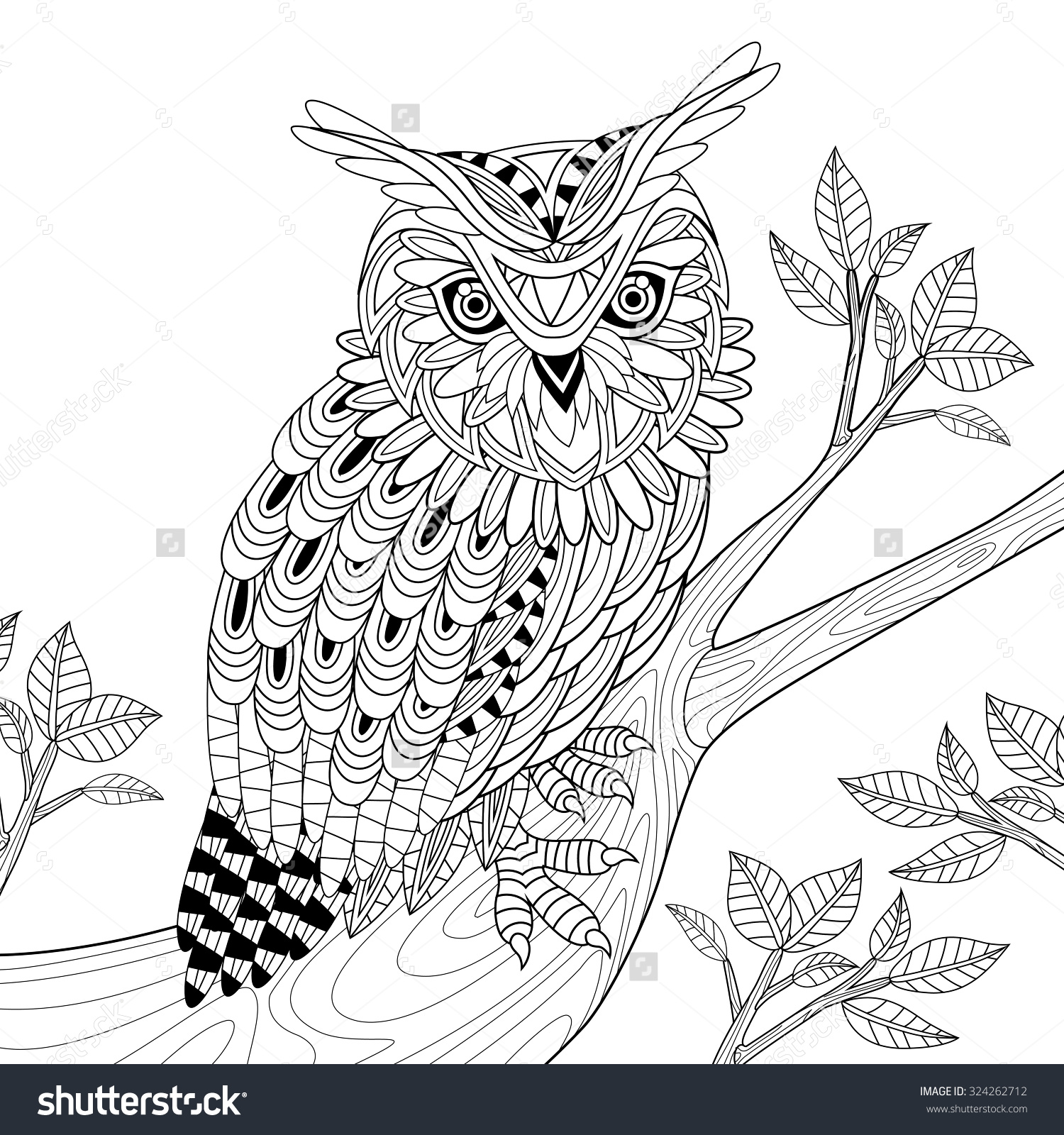 wise owl coloring page exquisite style stock illustration