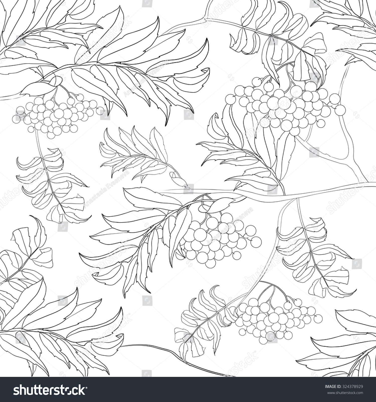 Art And Color Therapy An Anti Stress Coloring Book Birds In The Rowan Page