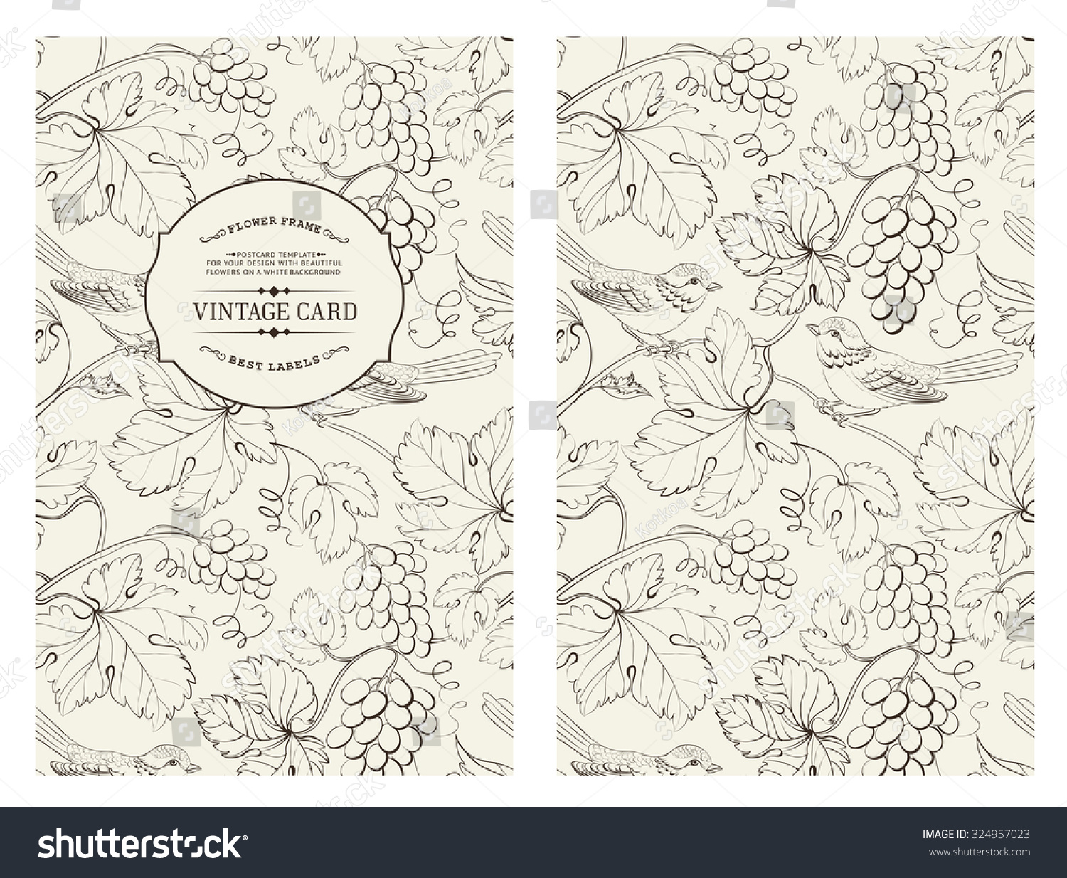 Book Cover Design Tumblr ~ Book cover design grape wine card vintage pattern of
