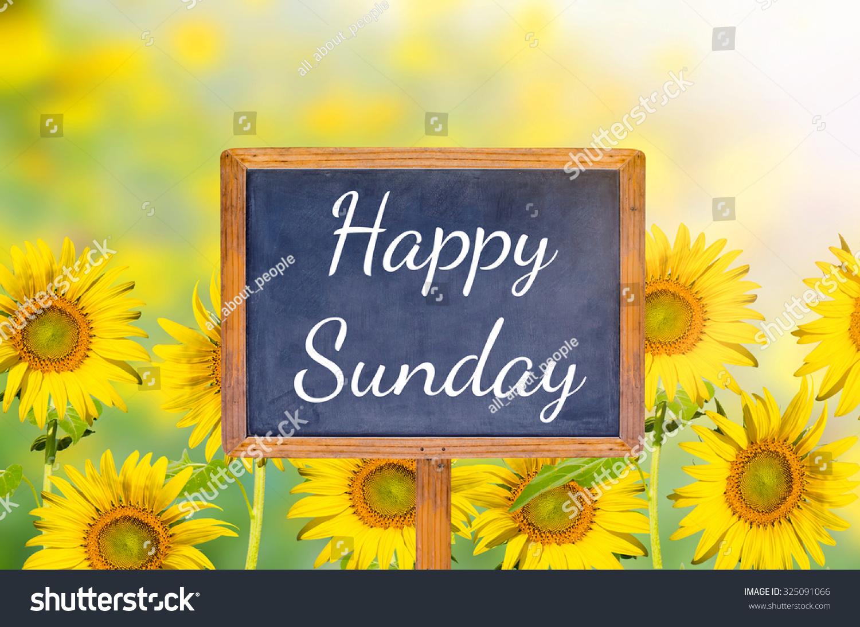 Happy Sunday On Blackboard With Sunflower Background Stock