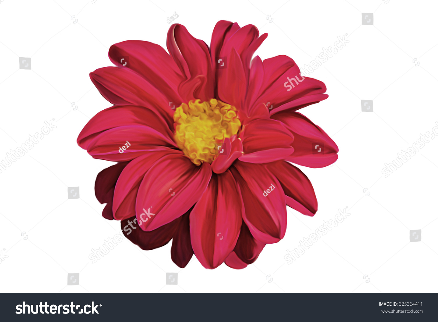Drawing Oil Painting Dahlia Flower On Stock Illustration 325364411