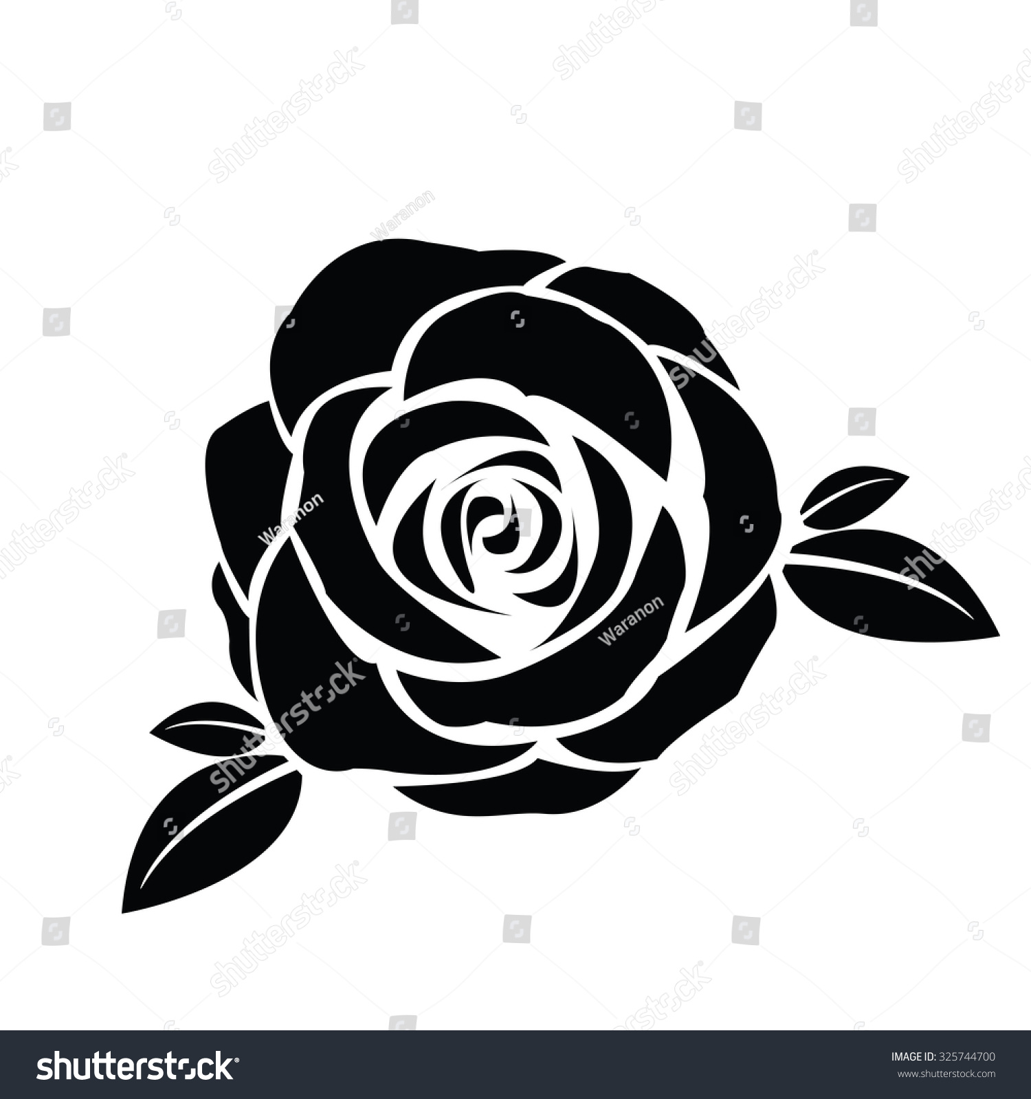 Related Keywords & Suggestions for rose vector