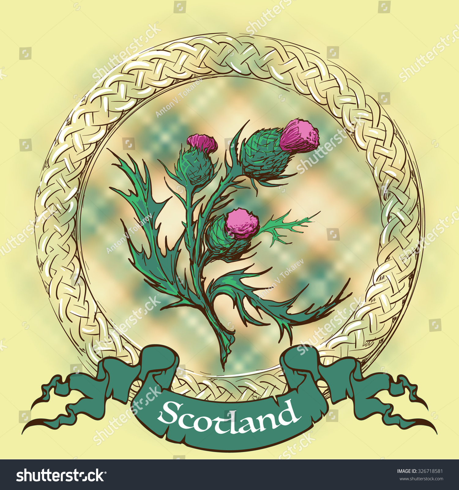 Caledonian thistle celtic decorative border traditional stock vector caledonian thistle in a celtic decorative border traditional symbol of scotland painted sketch with buycottarizona Image collections