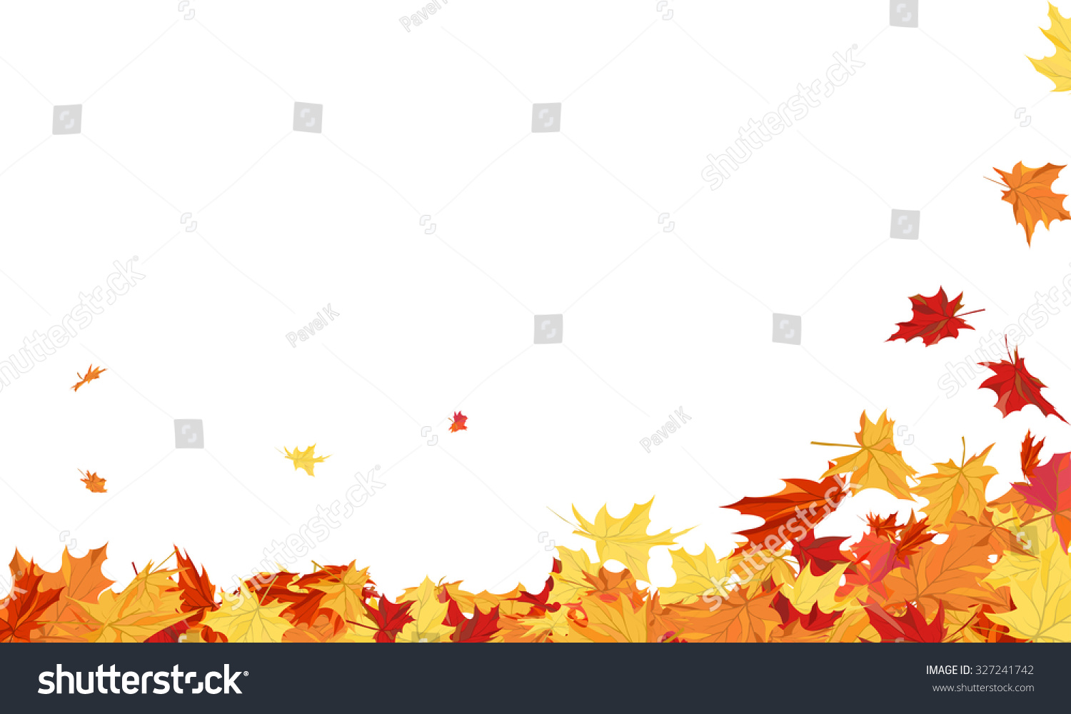 Autumn Frame With Blowing Maple Leaves Over White ...