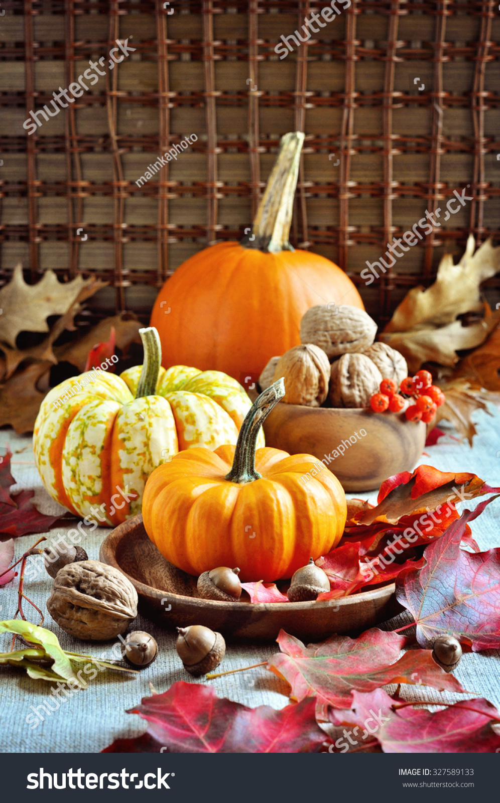 Pumpkins gourds autumn decoration thanksgiving selective