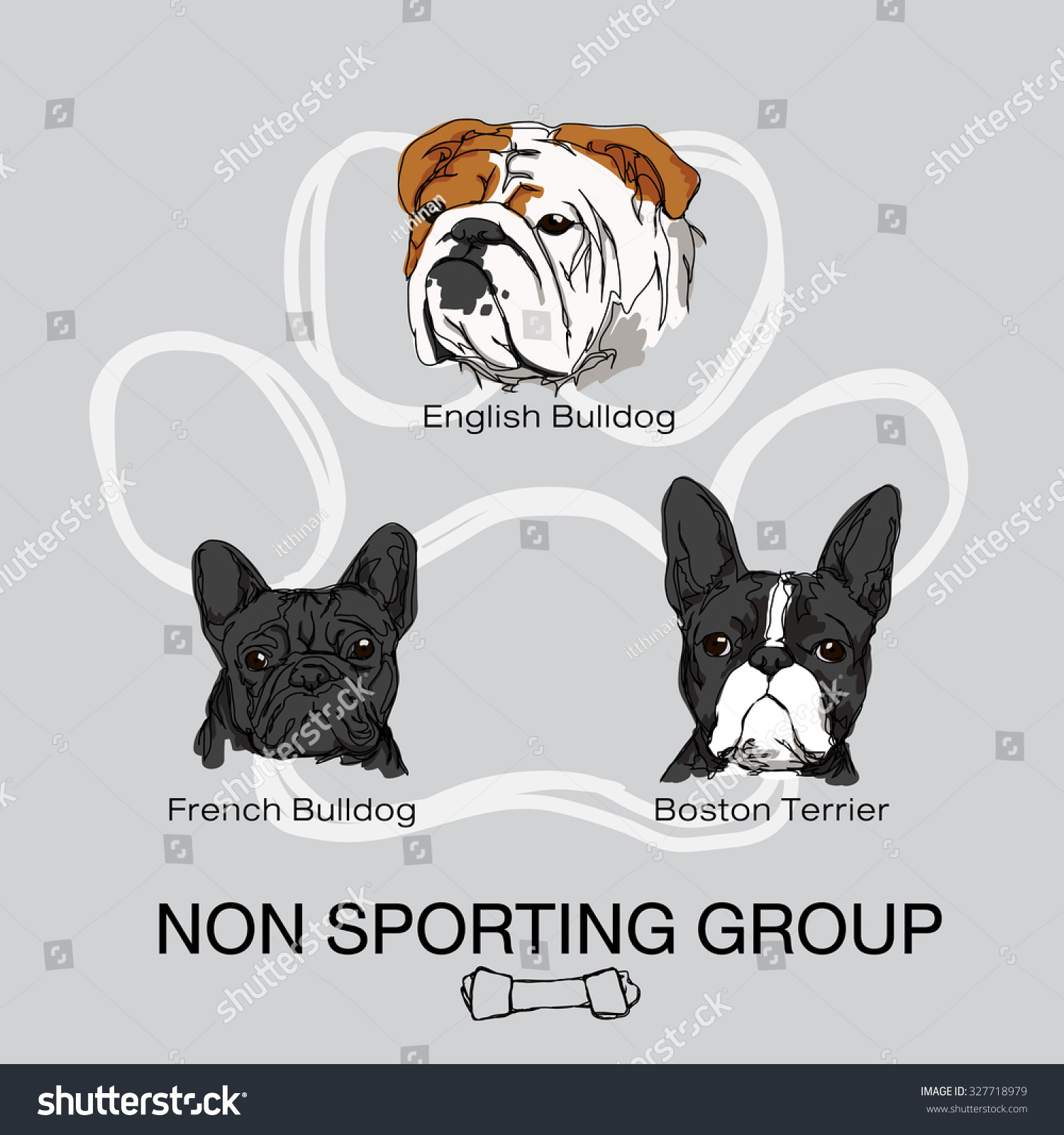 What group is a french bulldog in