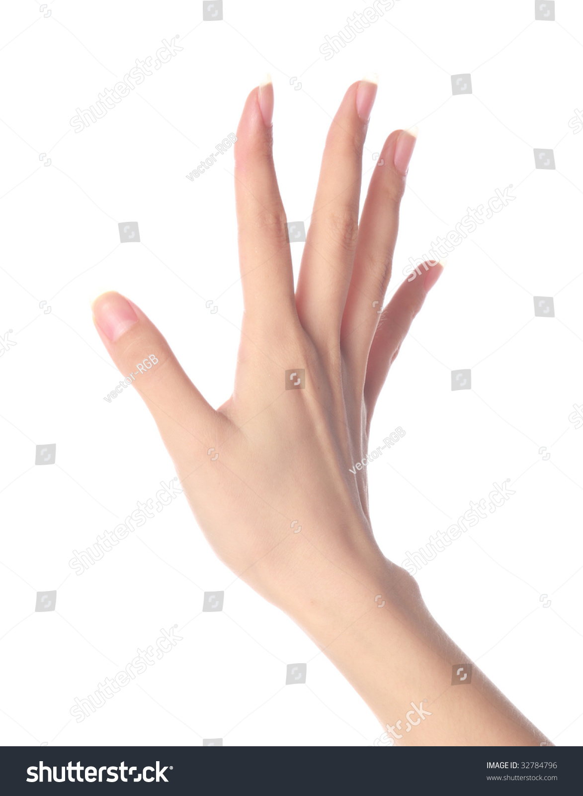 Womens Hand On Isolated White Background Stock Photo ...