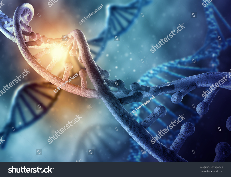 Research | Biochemistry | University of Colorado Boulder