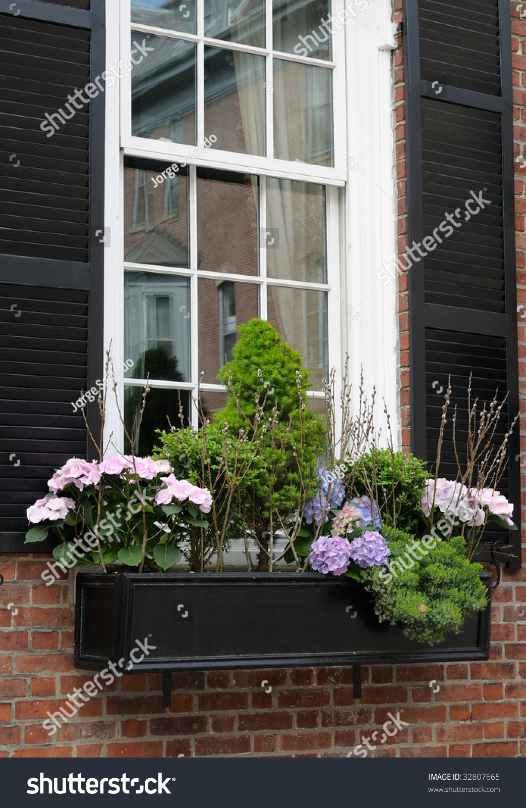 Elegant Window Box Boston Beacon Hill Stock Photo 32807665