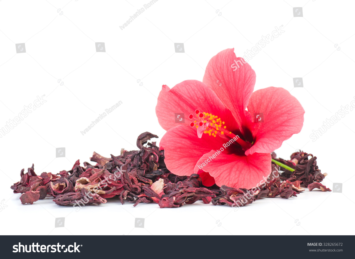 Fresh Dried Hibiscus Flowers Isolated On Stock Photo Edit Now