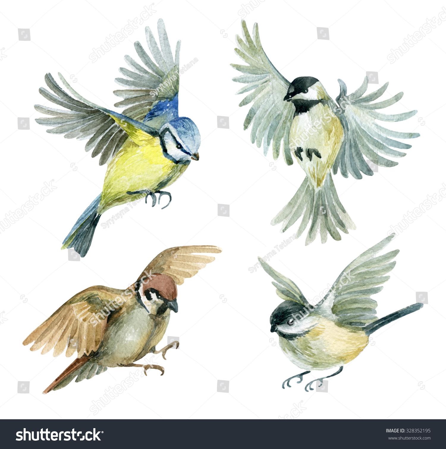 Flying bird illustration vintage - photo#25
