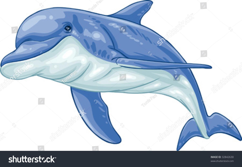 Vector clip art illustration dolphin. Hand drawn artwork in loose ...