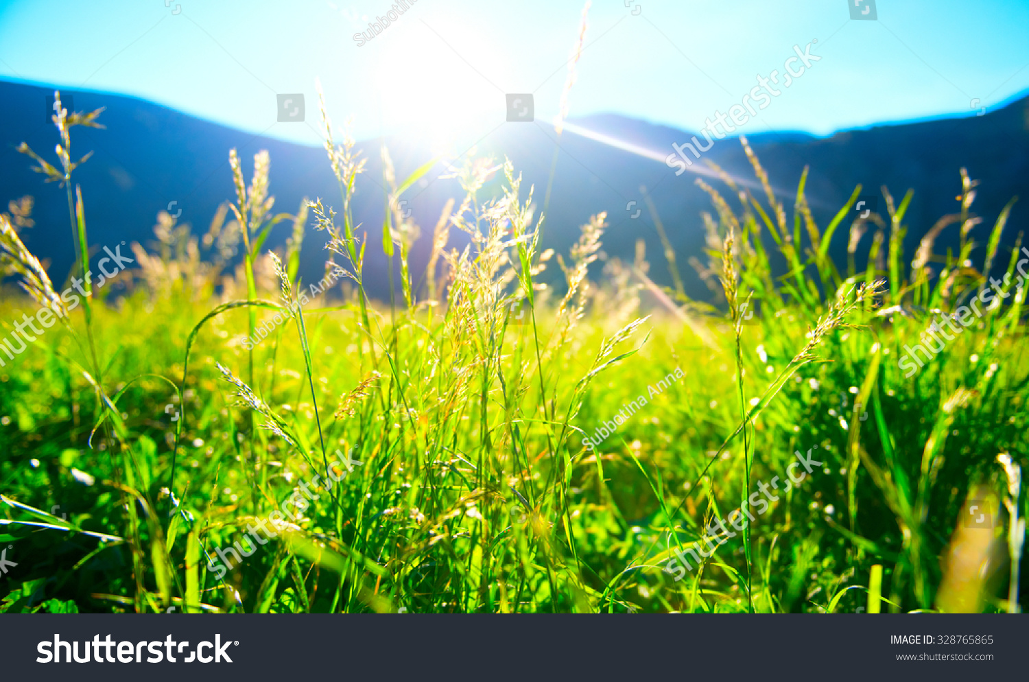 Beautiful nature landscape alpine meadow grass stock photo for Pretty grass